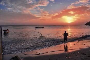 La meilleure saison pour votre voyage - Martinique