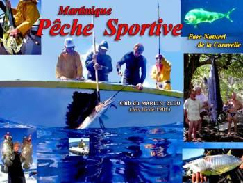 Pêche au gros - Club du marlin bleu
